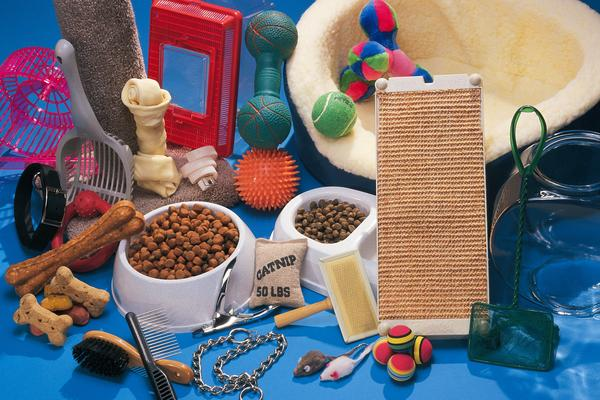 Materials To Make A Dog House
