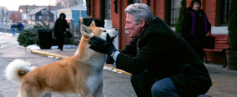 Movie Hachi Dog