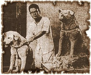 Picture of Hachikō with his dear master Ueno.