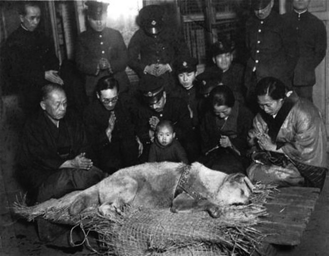 Personnel of Shibuya train station mourning over the loss of Hachiko with his master's wife.