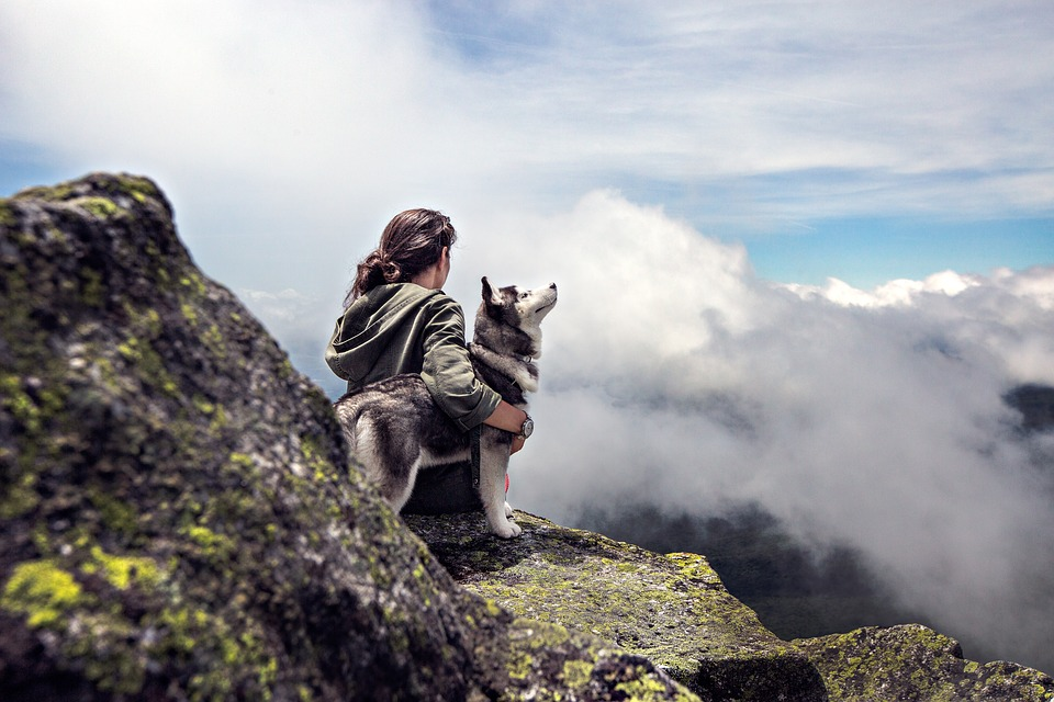 There is nothing more relaxing than going with your dog in nature.